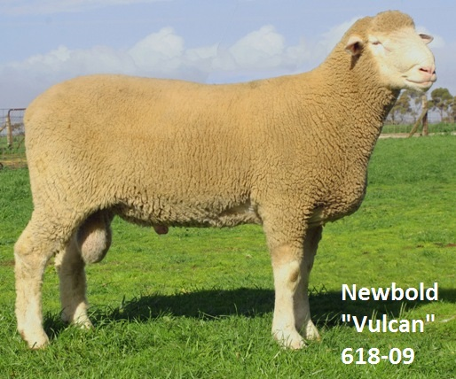 Newbold Vulcan 618-09