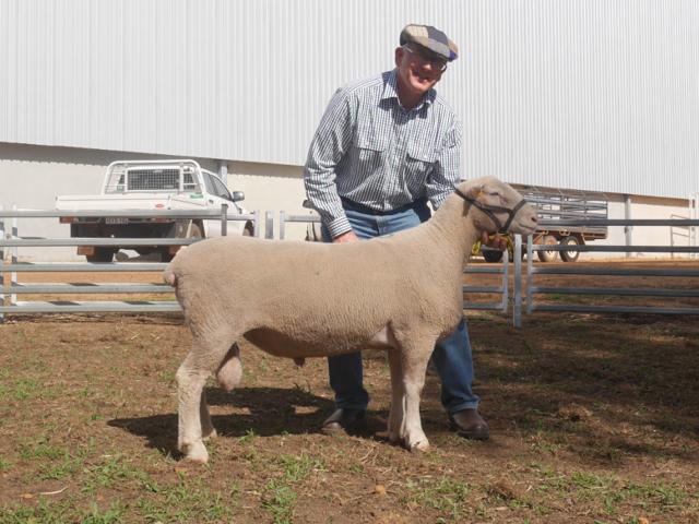 Hillcroft Farms 756/13