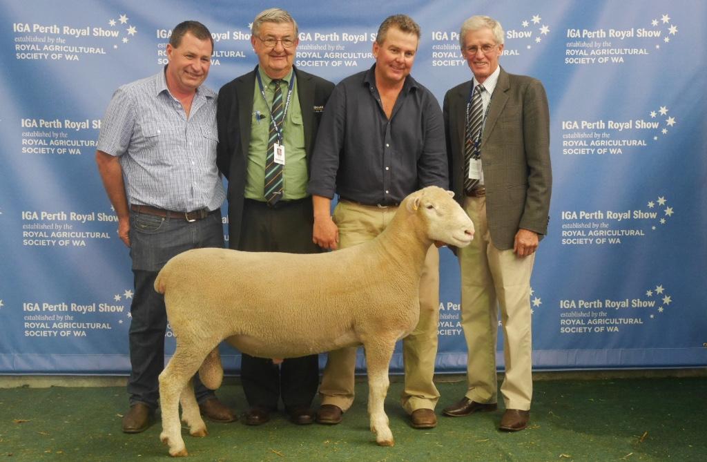 Hillcroft Farms 497/13
