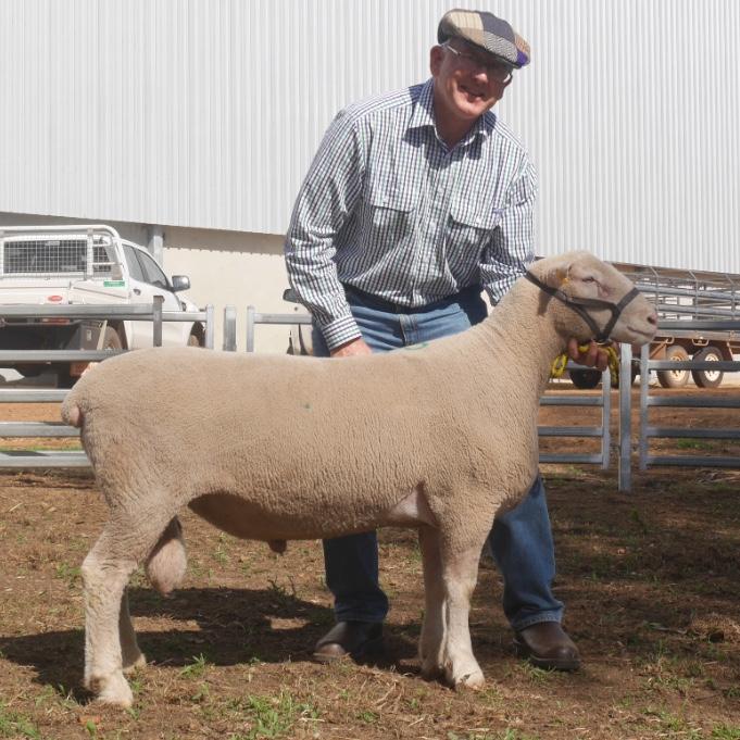 Hillcroft Farms 756-13