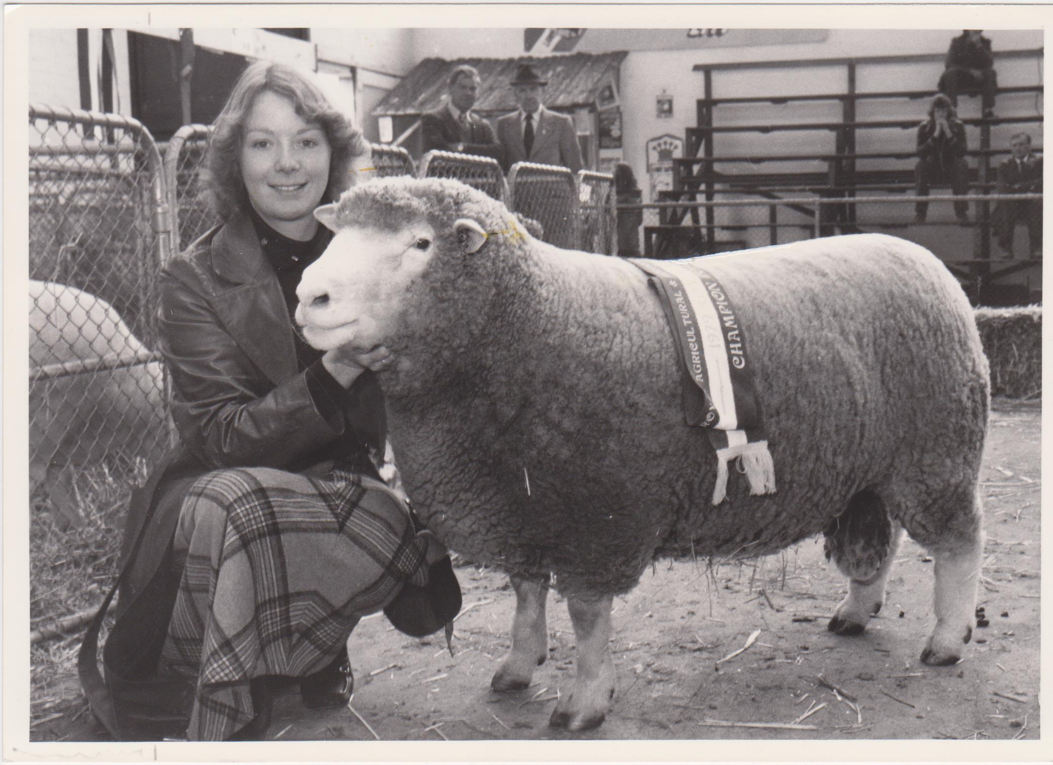 Champion Ram Adelaide Show (& Bill married Angela!)
