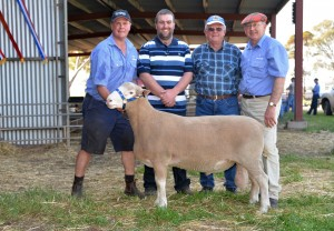 Newbold's Craig McLachlan (left) and Bill Close(right) are with Grant Johnson, Select stud, Peake and his father Trevor who founded the stud in 1956, and the ram Grant purchased for $5750.
