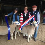2015 Gawler Champion Rams Newbold White Suffolk